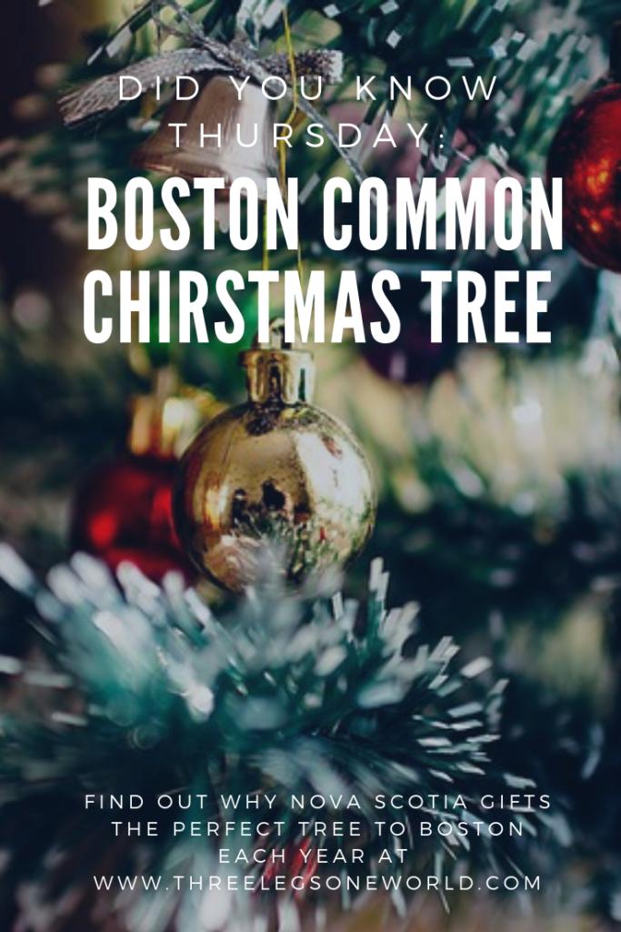 Did You Know Thursday Boston Common Christmas Tree Boston Common Boston Did You Know