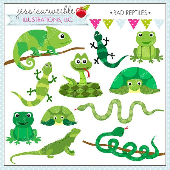 Snake Birthday Party Decorations – Reptile Party Decorations – Reptile Birthday Banner -Reptile Birthday Invitation – Snake, Lizard, Frog