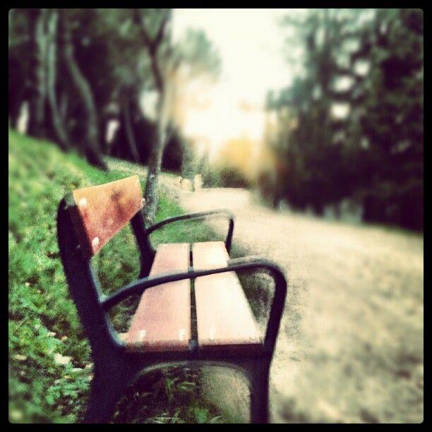 Un buen banco para sentarse a ver pasar la última tarde del año 2012.