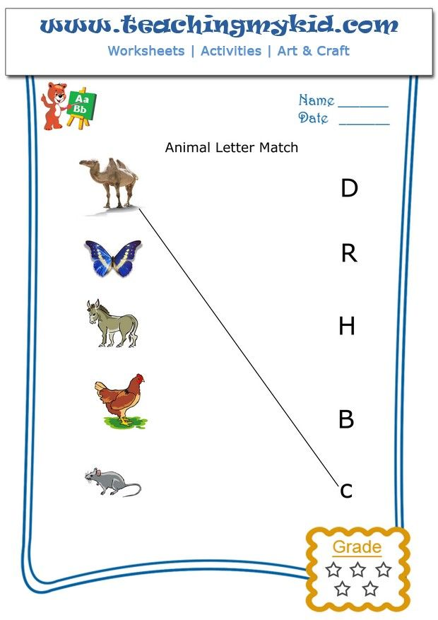 Match the animal with the first letter of their name – Worksheet 5 ...