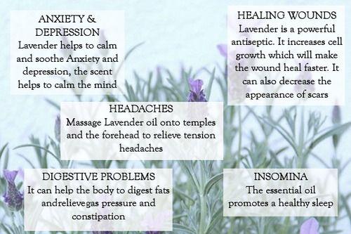 Lavender benefits :)