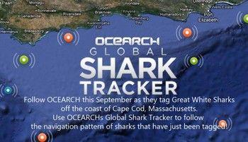 ocearch.org