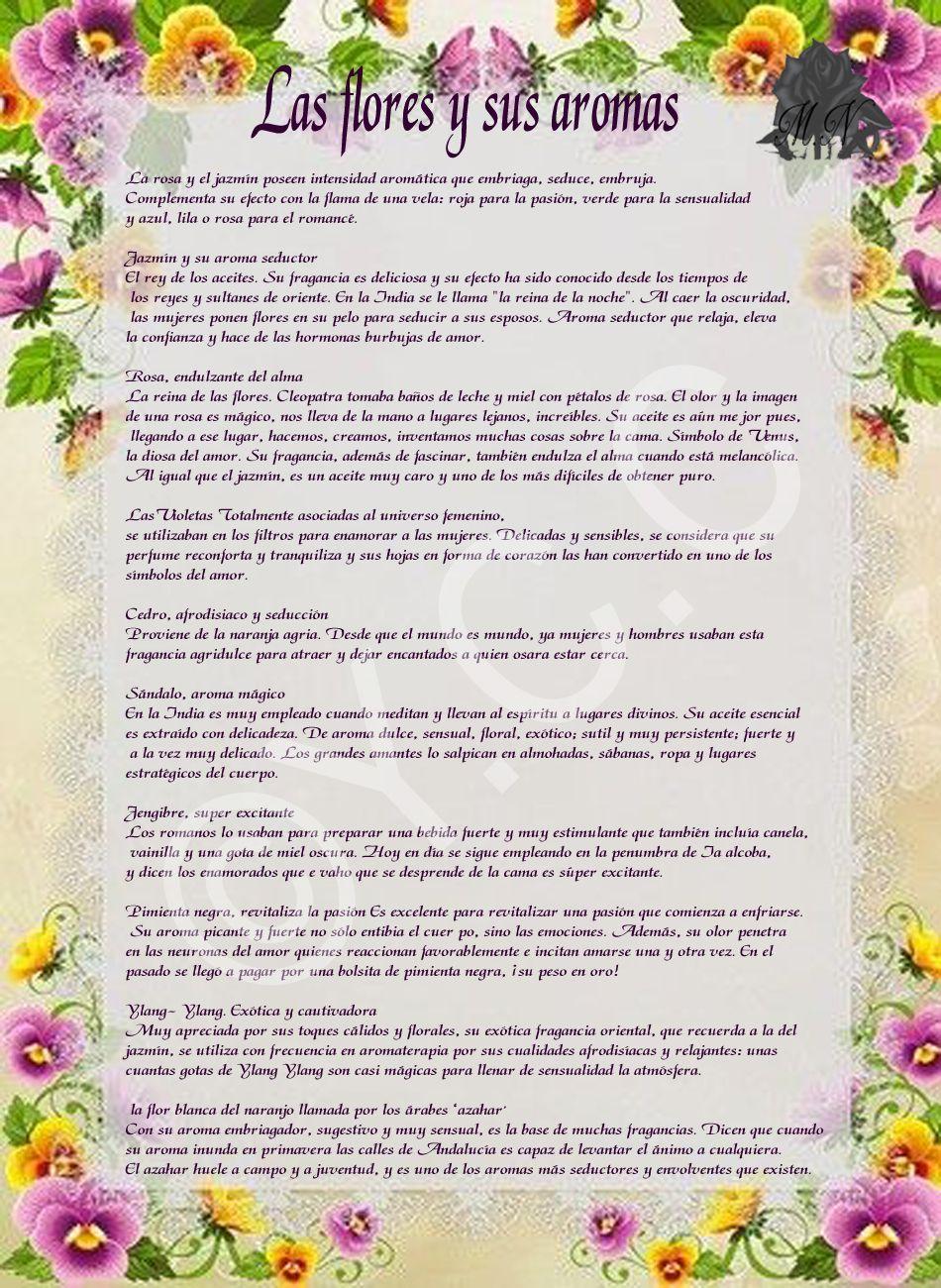 Trastos de Bruja: Las flores y sus Aromas