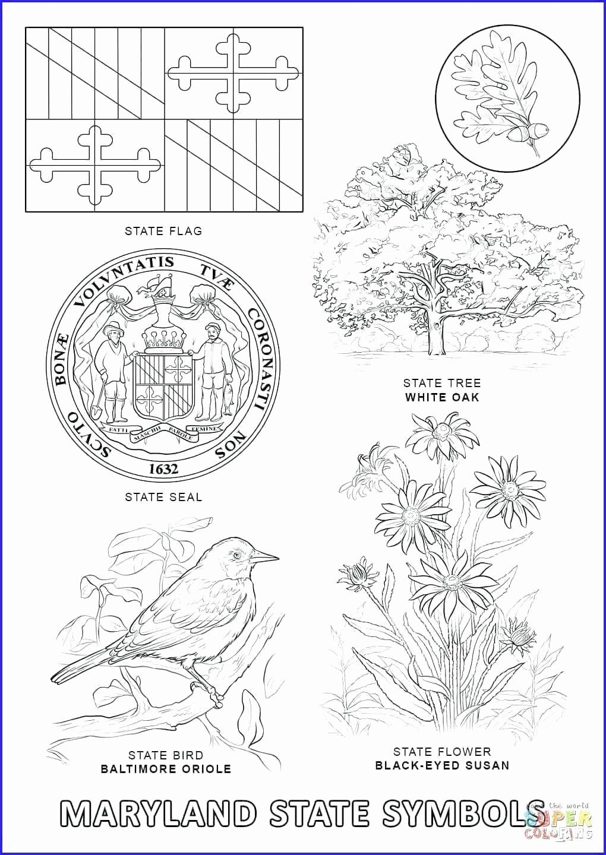 Texas Symbols Coloring Pages Di 2020 Dengan Gambar