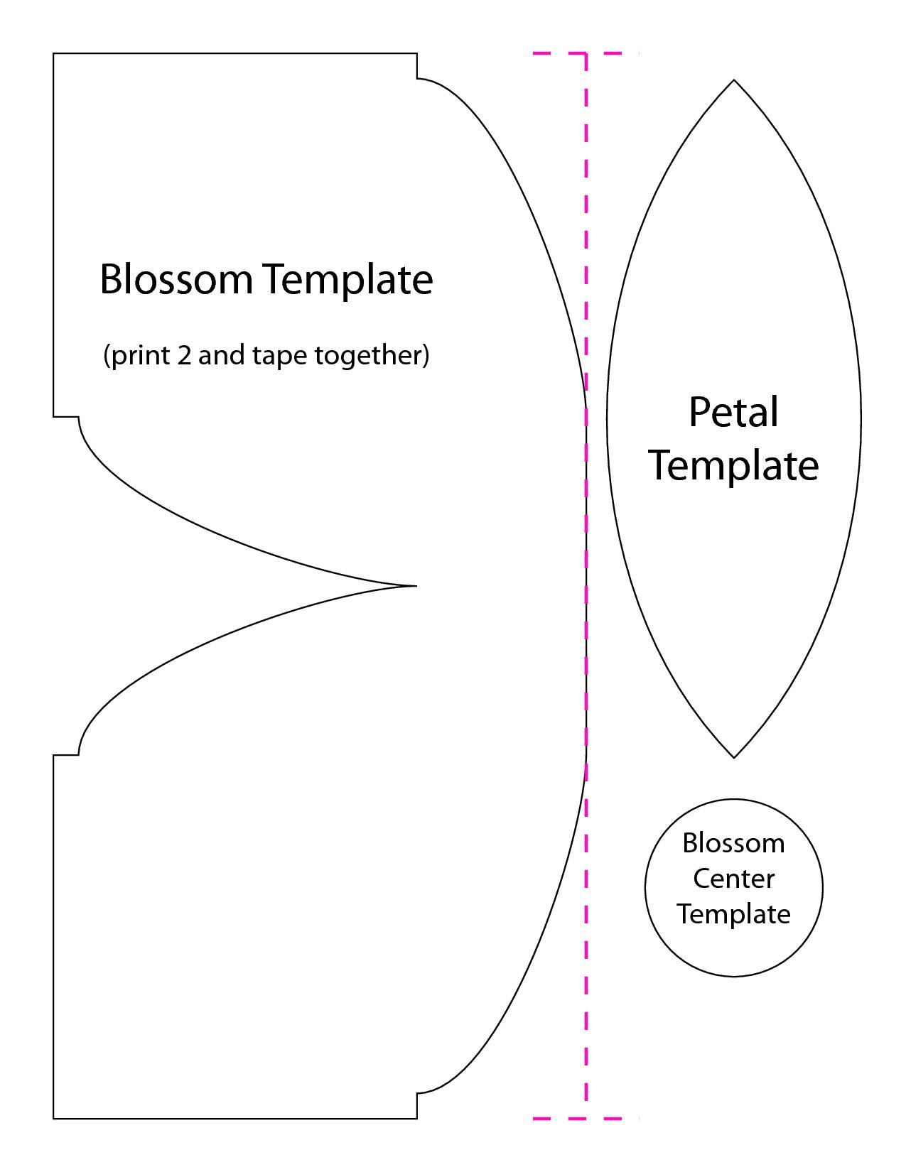3d Flower Template Google Search Crepe Paper Flowers Pinterest