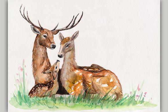 Family of deer. | Baby animal drawings, Deer illustration, Family drawings