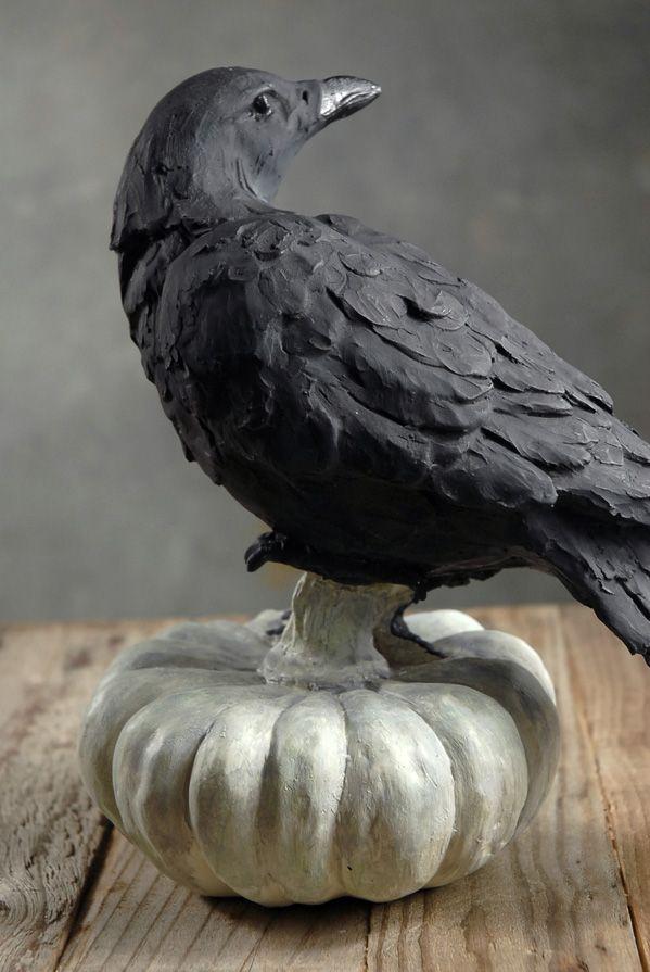 Crows Ravens Raven On A Pumpkin Halloween Inspiration Crow Art Black Bird