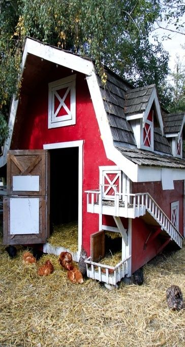 Barn chicken coop look at the little doors farmin for Cute chicken coop ideas