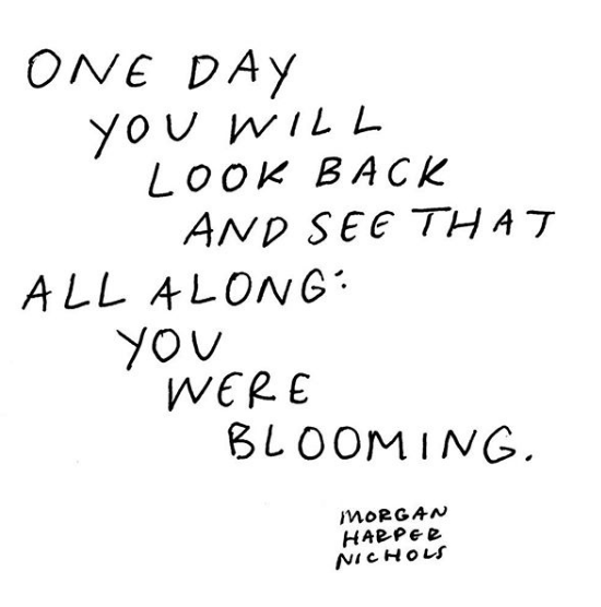 One day you will look back & see that all along you were blooming.