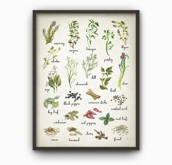 herbs and spices watercolor kitchen wall art poster. Black Bedroom Furniture Sets. Home Design Ideas