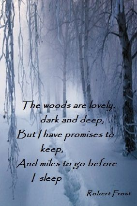 Stopping By Woods On A Snowy Evening Robert Frost Are There Really