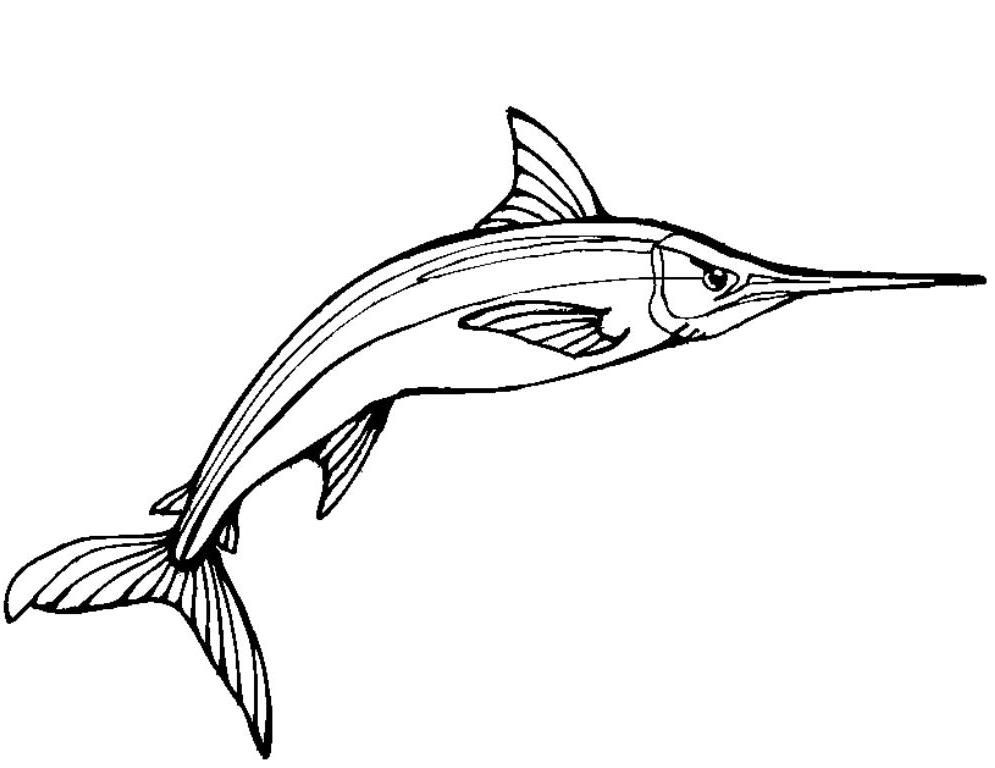 Swordfish Coloring Pages Printable Pages Coloring Pages Printables Business Card Holders