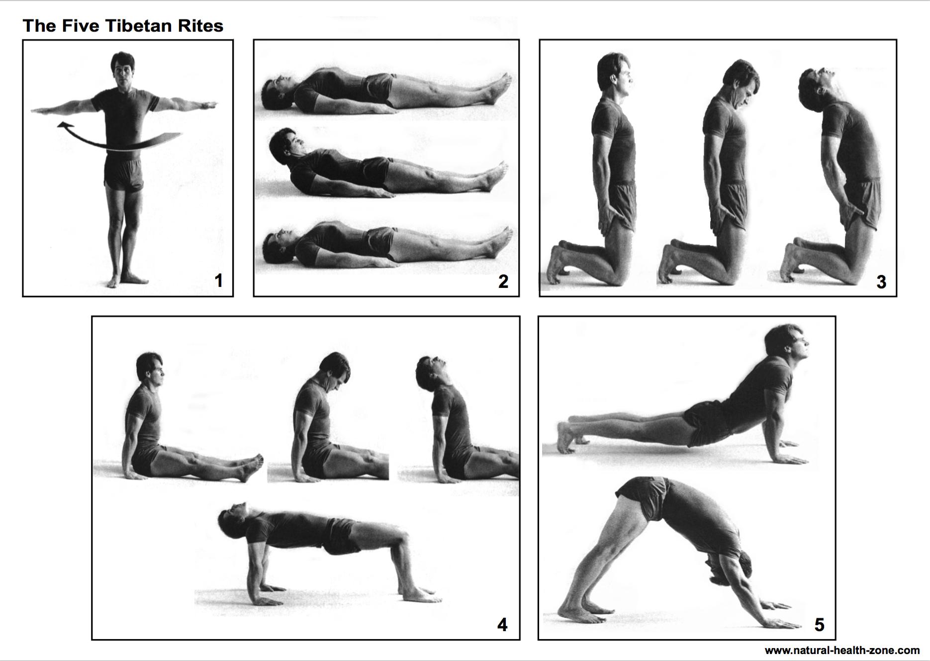 пять тибетских жемчужин упражнения картинки съемках