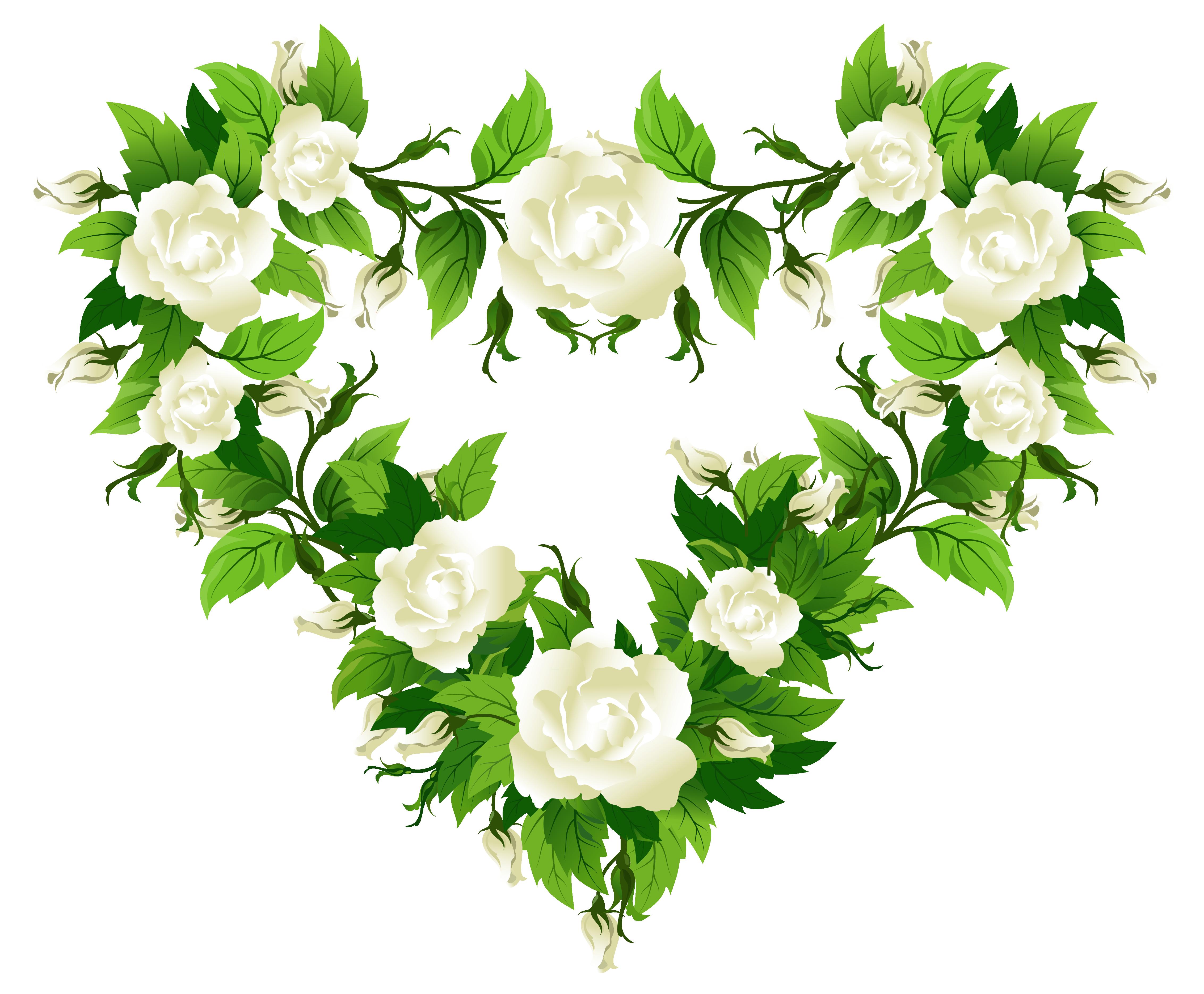 White Rose Flower Transparent Png Free Image By Rawpixel Com Teddy Rawpixel In 2021 White Rose Flower Rose Flower Png Rose Flower