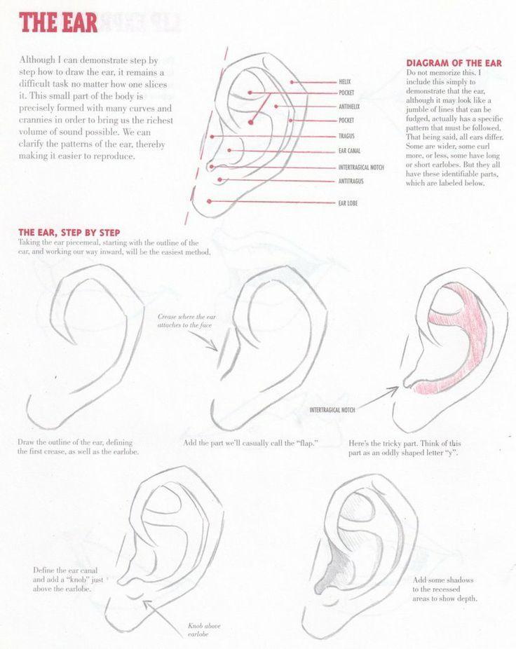 TUTORIEL de l\'oreille par Christopher Hart 2003 comment dessiner ...