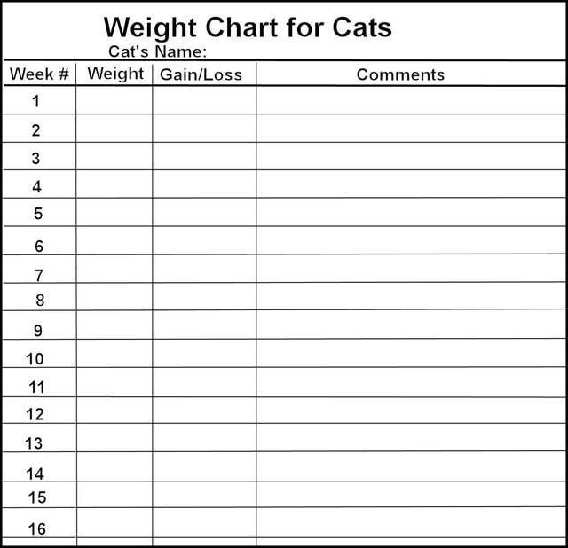 Fat cat jaspurr   weight control diary printable also rh pinterest