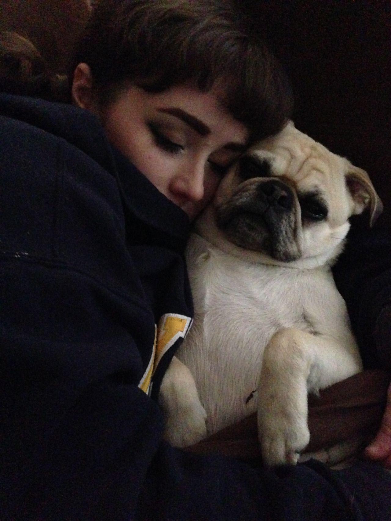 Freddie (Nicole's dog)