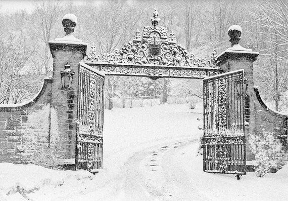 Dining decor architectural details iron gate by brandMOJOimages, $25.00