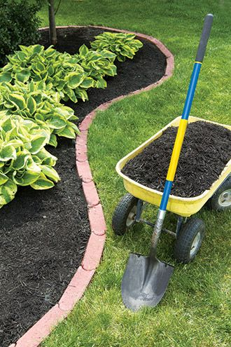 Organic Mulch Such As Wood Compost Or Pine Needles Can Really Make Your Plant Colors Pop While Retaining Soil Moisture Mod Hosta Gardens Hostas Hosta Plants