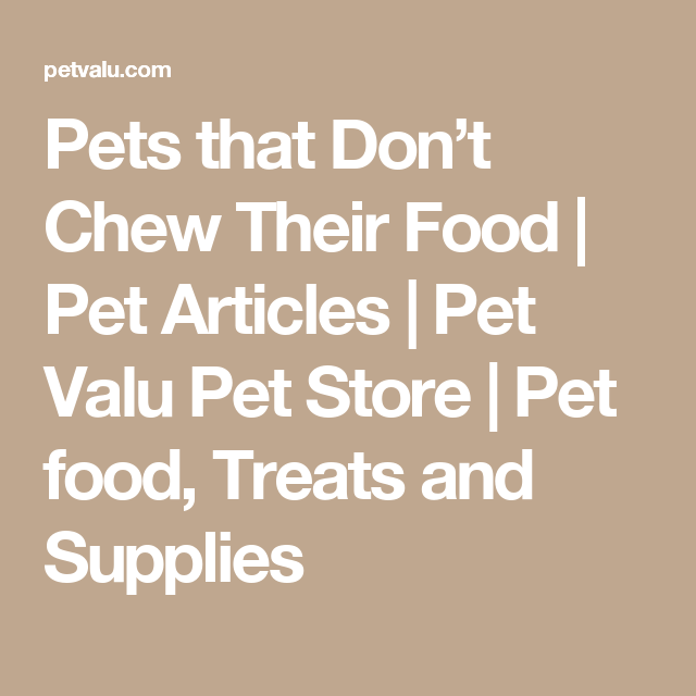 Pets That Don T Chew Their Food Pet Articles Pet Valu Pet Store Pet Food Treats And Supplies Food Animals Pet Store Food