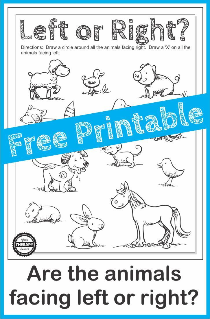 Directionality Worksheet - Which Way is the Animal Facing | ILS Kids ...