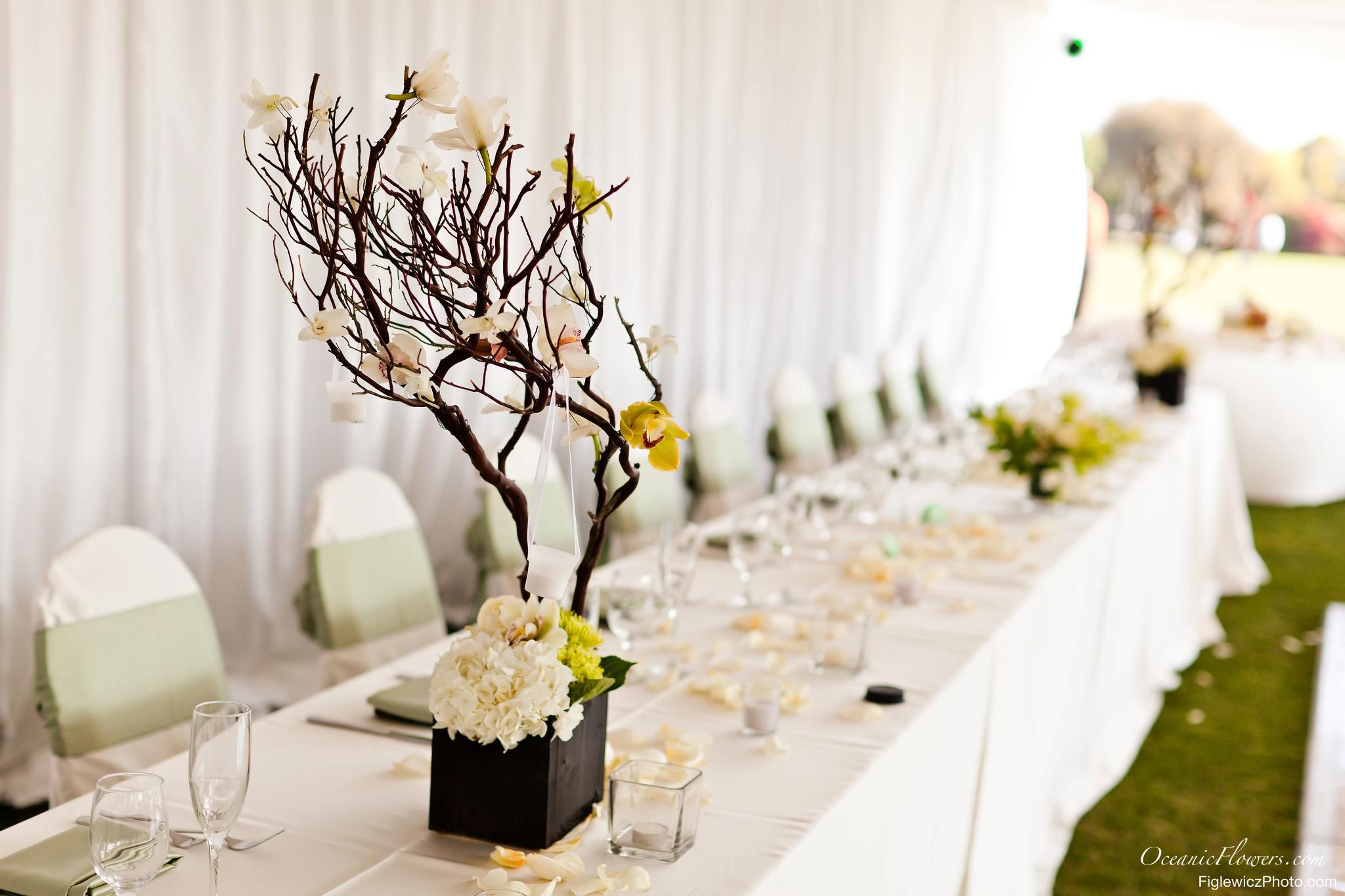 White and Yellow Manzanita Tree, Large Centerpiece | Large ...