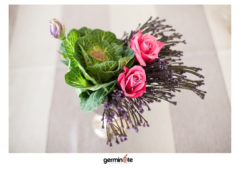 Germinate photography