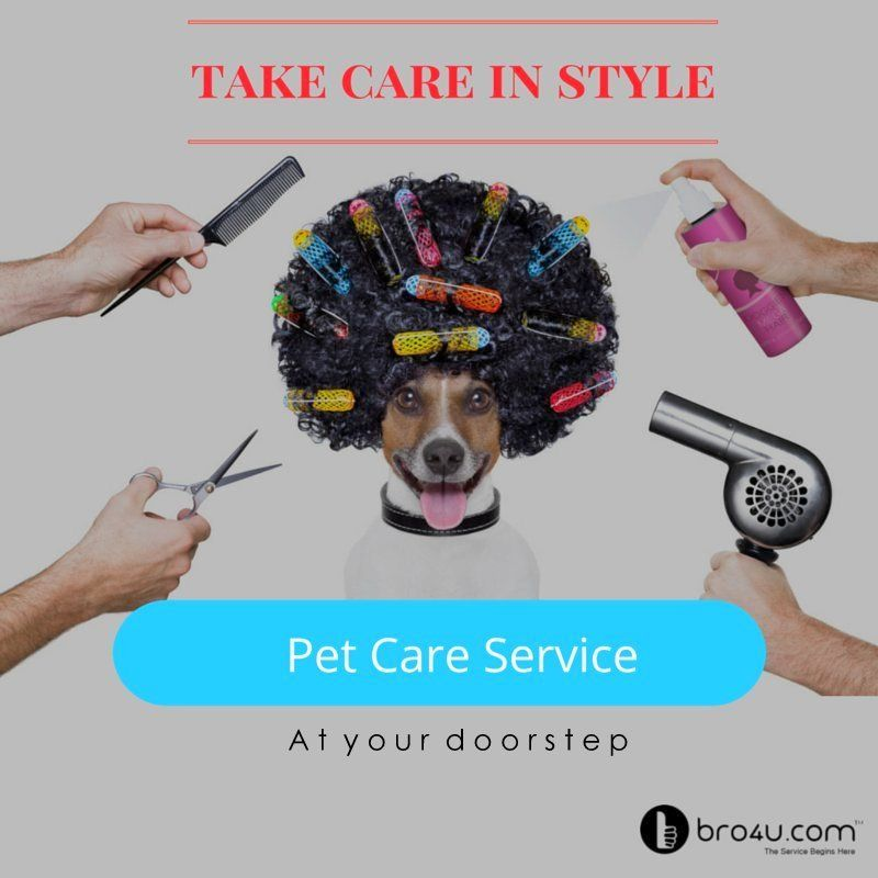 A better world for your pet is here Book now https//bro4u