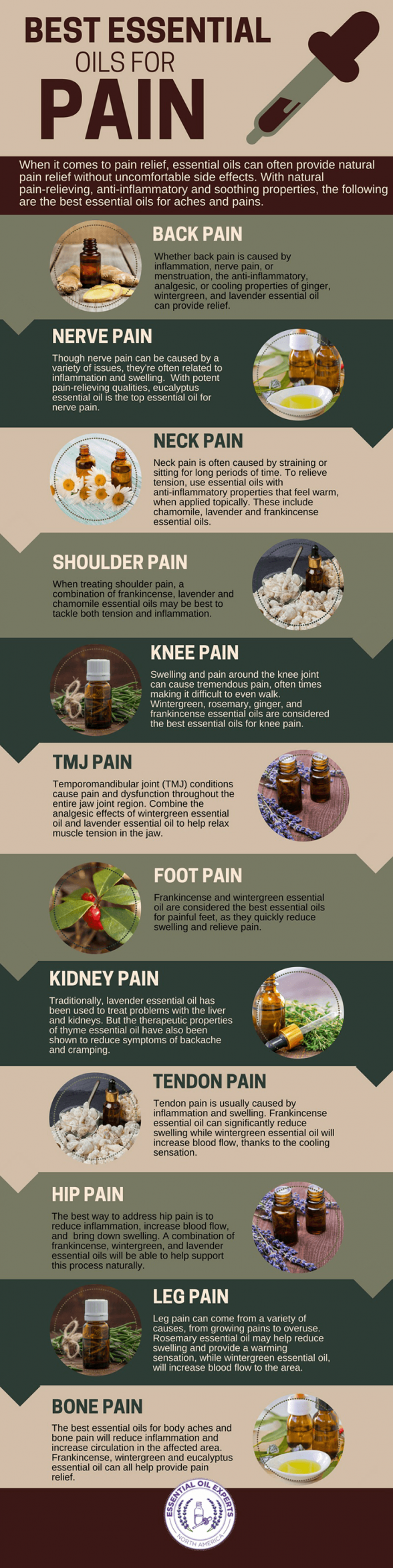 List Of Pinterest Aromaterapi Natural Pictures Essential Oil Aroma Terapi The Most Effective Oils For Pain Including Back