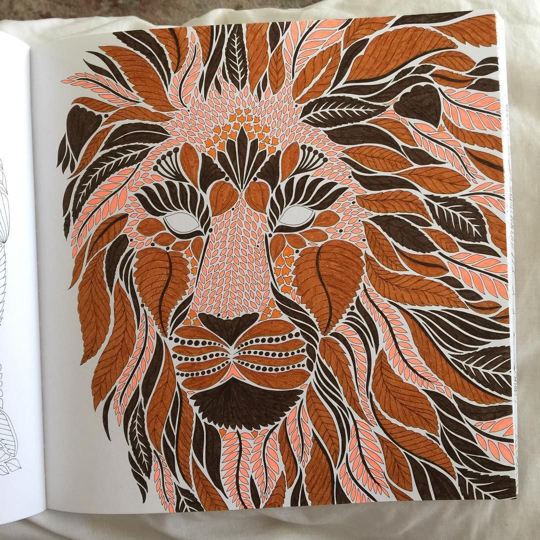 Milliemarotta Wildsavannah Colouring Lion Loving The New Millie Marotta Book Wild Savannah