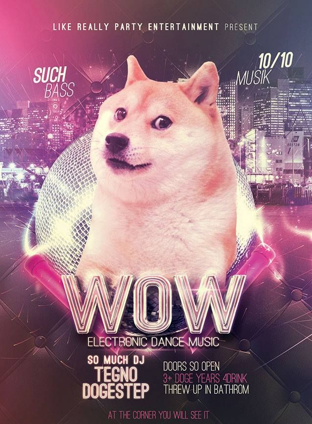 Me when Breaking Bad ends (With images) Doge meme, Dog