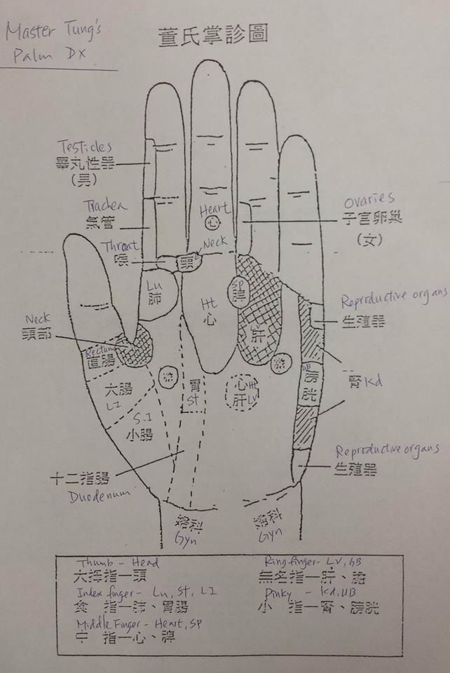 Another Master Tung's palm chart. | Accupuncture ...