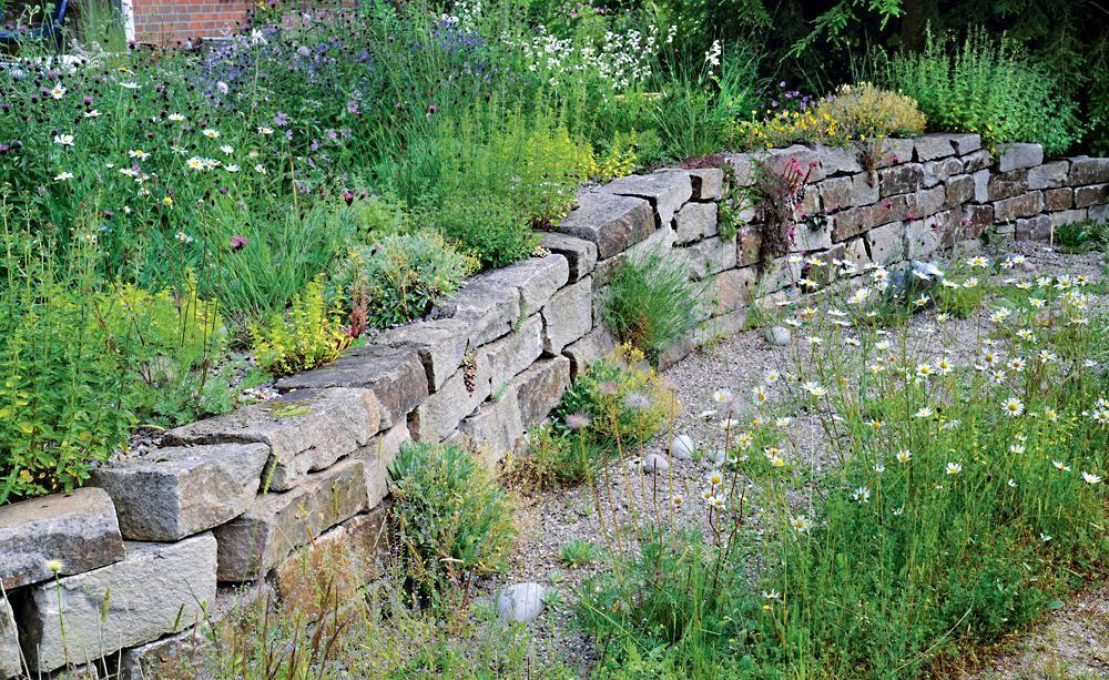 Gestaltungsideen für einen Naturgarten Naturgarten, Steine und - garten ideen gestaltung
