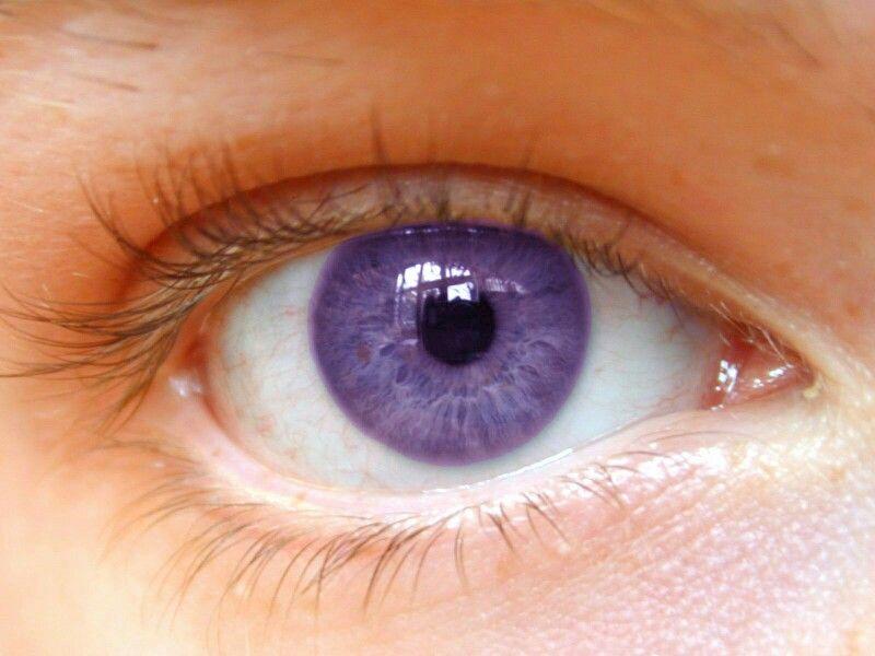 Light Purple Eye Aesthetic Eyes Beautiful Eyes Color Eye Color