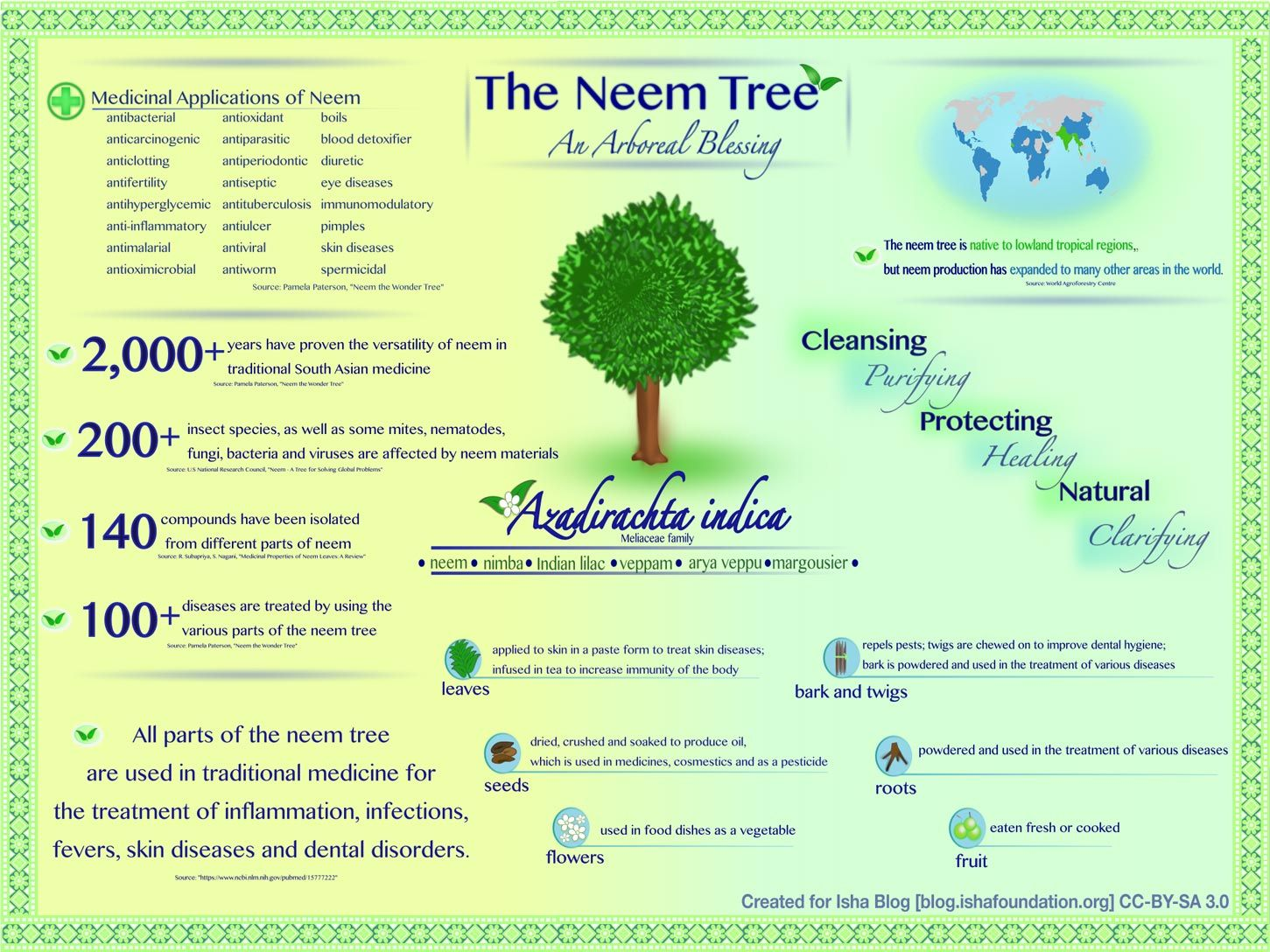 Infographic - Benefits of Neem for Health and Vitality | neem tree