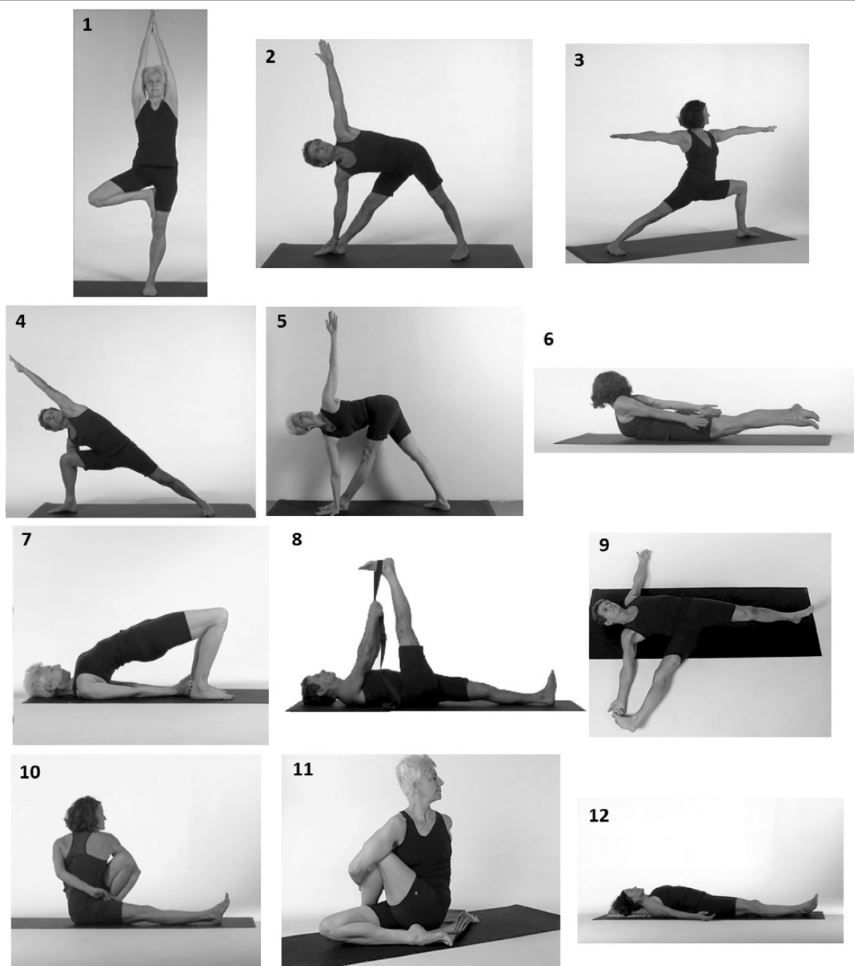 Pin On Yoga For Osteoporosis Build Bone Mass With Yoga