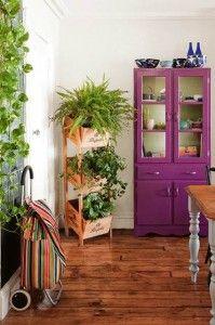 Interiores con plantas
