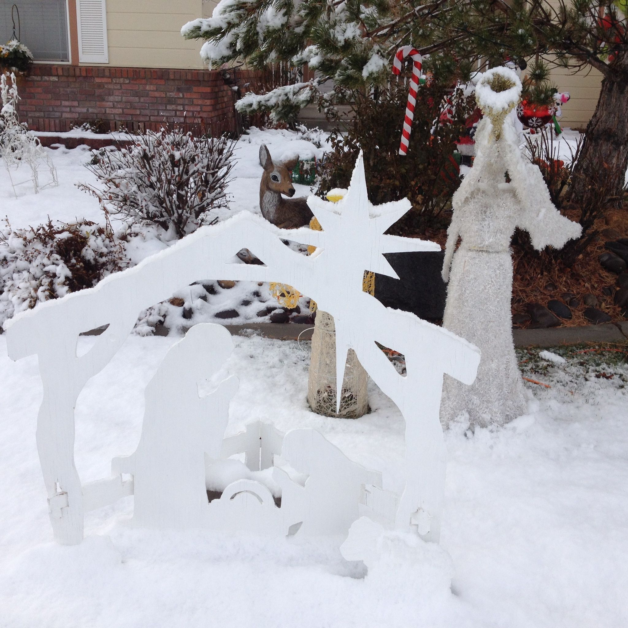 Christmas. 1135 Country Club Dr, Minden, NV | Our House | Pinterest