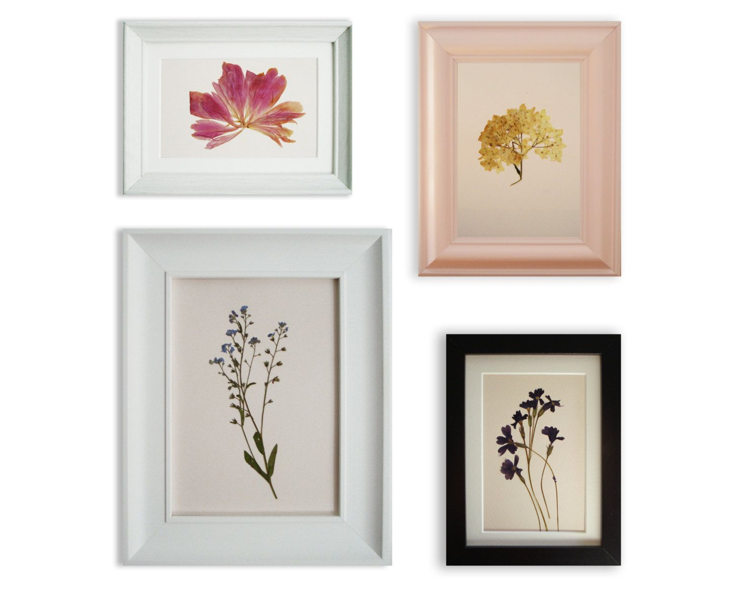 Wall art set of 4 Herbarium artworks #pressedflower #herbarium ...