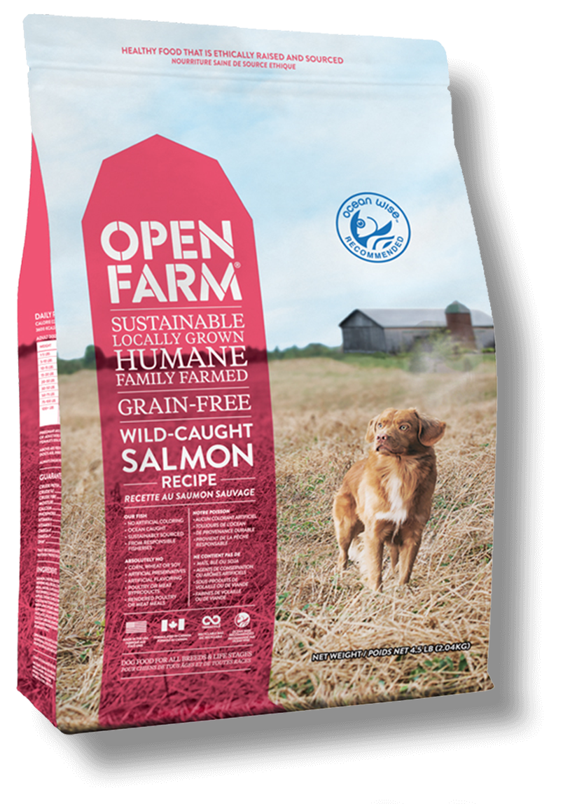 For The Best Fed In Your Family Free Dog Food Dog Food Recipes Grain Free Dog Food
