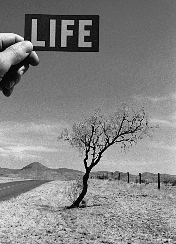 Photographer Rémi Noël's Magical Road Trip Across America   Yatzer