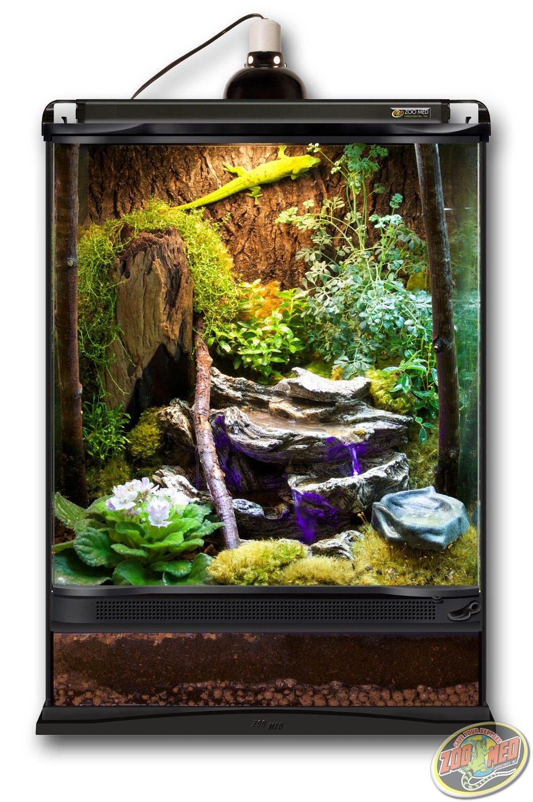 One Of Our Custom Zoo Med Forest Habitats We Have At Zoo Med Hq