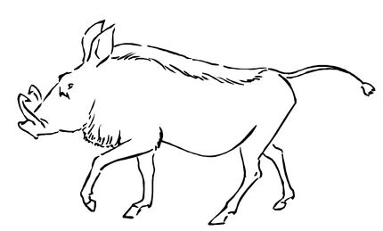 Click To See Printable Version Of Warthog Coloring Page