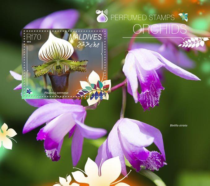 Post stamp Maldives MLD 14803 bOrchids  (Paphiopedilum sukhakulii)