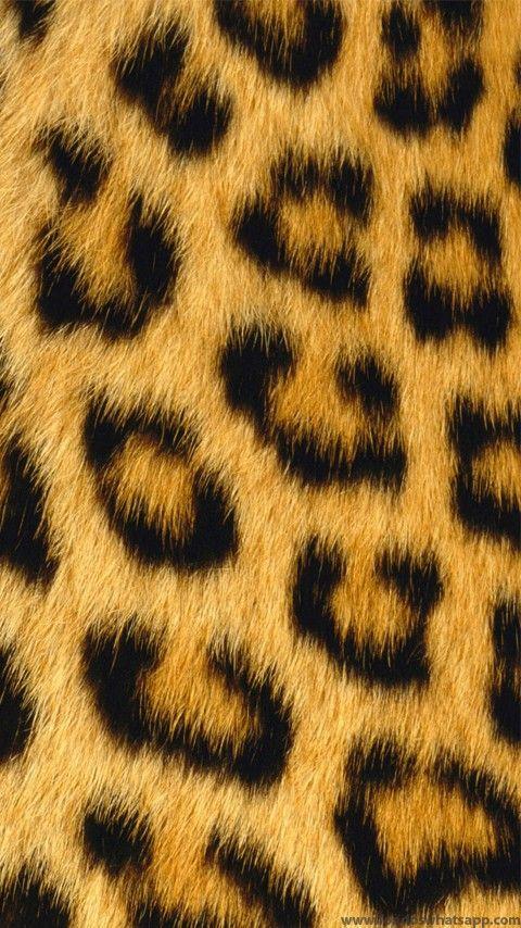 Piel Leopardo Wallpaper Leopard Print Wallpaper