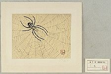 not identified - Spider (etching)