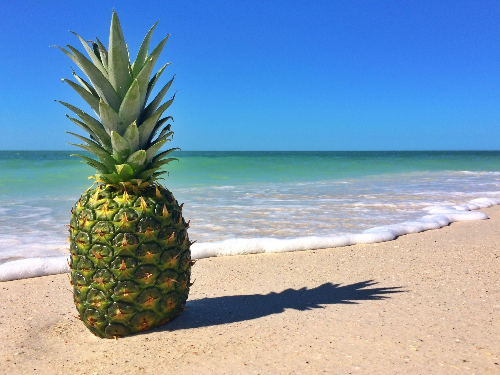 Pineapple At The Beach: Pineapple Computer Wallpaper Backgrounds