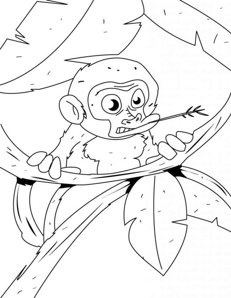 Sock Monkey Coloring Pages From Animals Coloring Pages Category