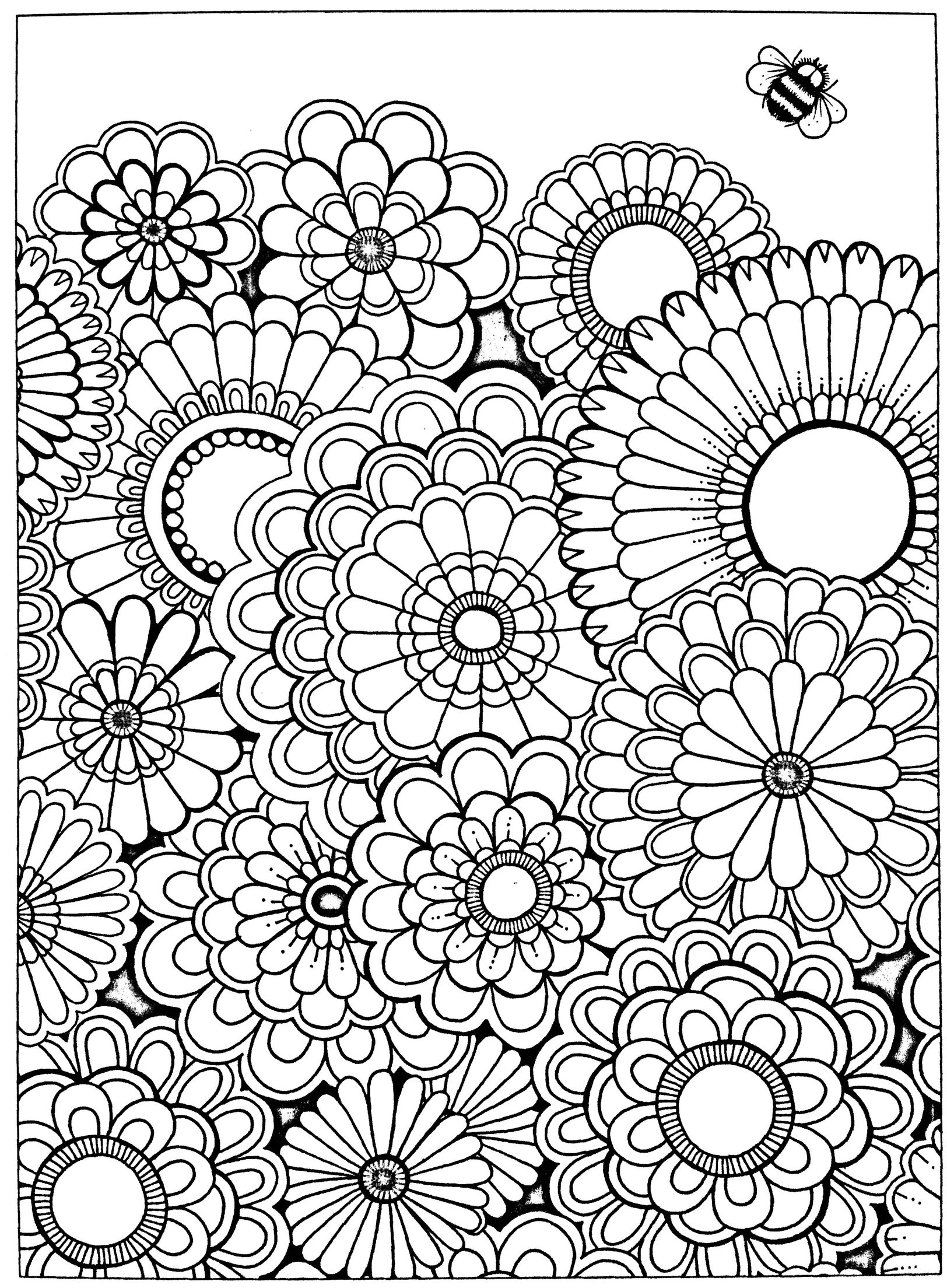 Free adult coloring page Secret