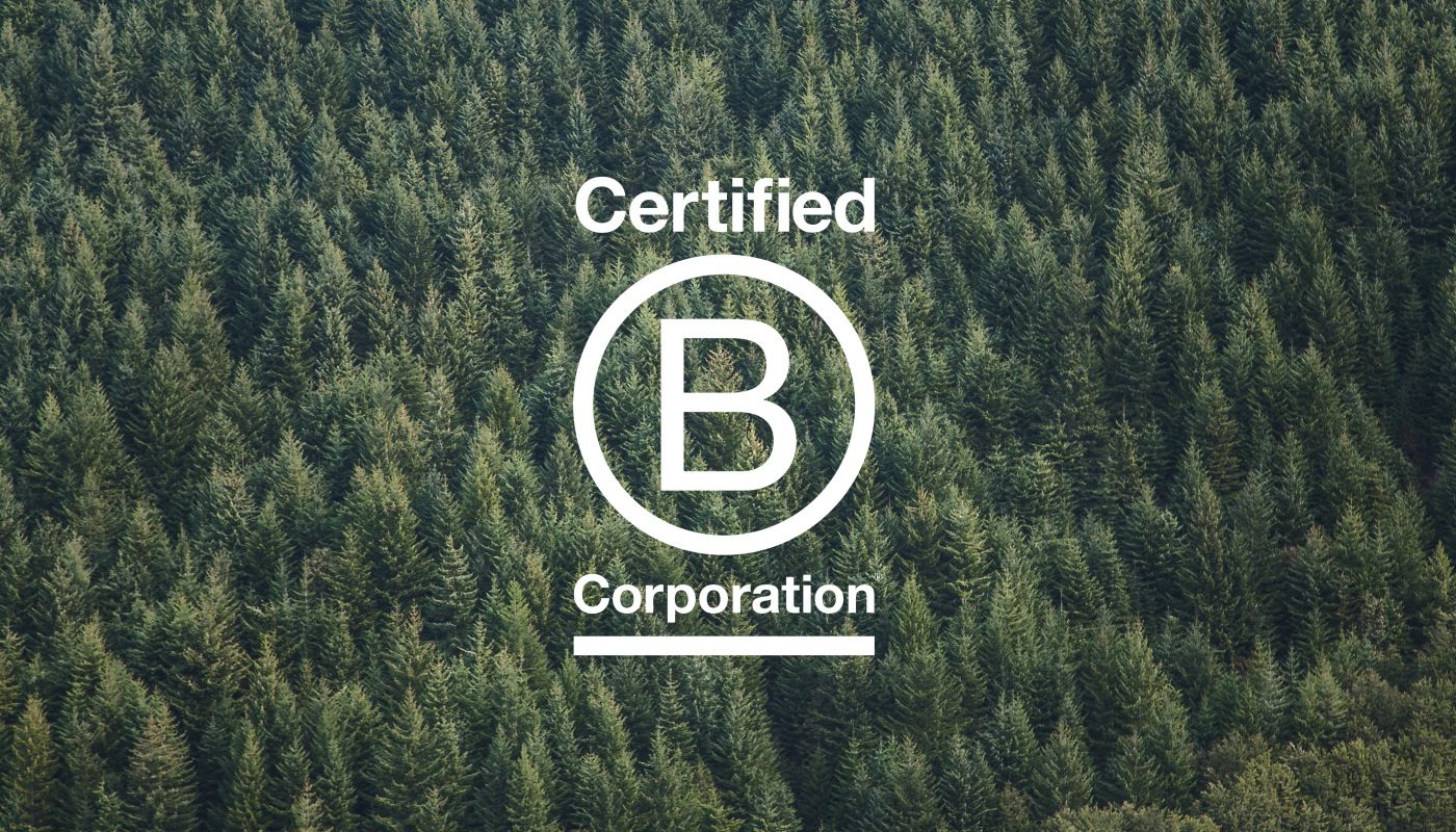 Why is B Corp Certification Important? Research triangle
